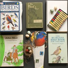 Bird Study - The Charlotte Mason Way