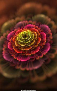 Kale -   Bloom Fractal Photo - by Flowers Garden Love
