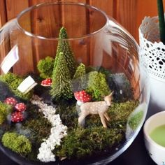 It may be cold outside, but you can always keep a little sunshine inside. A magical terrarium.