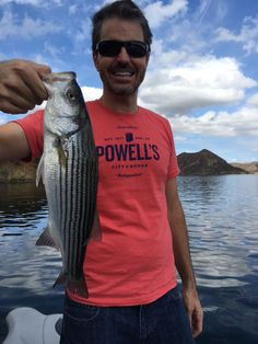 10/17/2015 and here is another angler with a really nice striped bass that he caught fishing with light spinning gear at Pyramid Lake with Southern California bass fishing guide Rich Tauber. What a fantastic year for striped bass fishing at Pyramid Lake on light tackle.