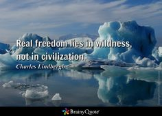 Real freedom lies in wildness, not in civilization. - Charles Lindbergh