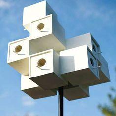 martin bird house plans. Home \u0026 Garden. Martin Bird HousePurple House PlansPurple Plans E