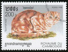 Cambodia 1998 Cat Stamps - Scottish Fold
