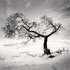 Michael Kenna from the series Silent World Minus Twenty-Eight, Peterhof, Russia, 1999
