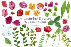 Digital Clip Art, Watercolor Flowers, Floral Clip Art, Watercolor Meadow,  By swiejko