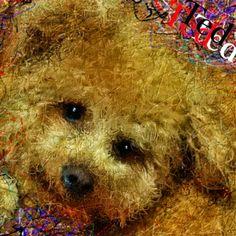 PCペイントで絵を描きました! Art picture by Seizi.N:   以前にpickのお友達犬をお絵描きした時、もう一枚描いた絵ですこんな感じにコラージュした作品はお絵描きだから出来ますね、記念の作品になればイイです。  今日は僕のfacebookのお友達の歌を紹介します、FBでミュージシャンやアーチストや有名スターの方々と僕の絵の繋がりで、たくさんの友達が出来ました、その中の何人かの歌を紹介していきます。 David So Ft. Toestah - Used to Be 歌の上手いコメディアン http://youtu.be/BOcPN59CVJ8  tumblrの僕のブログでも見れます。 http://nodasanta.tumblr.com/