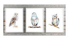 Uilen Kunst  set van 3 uilen prints  kerkuil  door Zendrawing