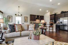 Dunhill Homes Paloma Creek Living Room