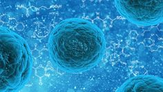 Our Parkinson's Place: Stem cells: a miracle cure or playing God?