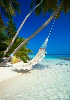 Summer travel beach life