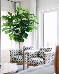 "Kate Marker Interiors on Instagram: ""These chairs make the birds fly! #katemarkerinteriors #leeindustries #familyroom"""