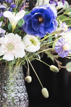 Pantone Color of the year 2020 Color Of The Year, Pantone Color, Dandelion, Silk, Classic, Flowers, Plants, Blue, Floral Arrangements