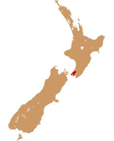 Wellington is home to Te Papa (the Museum of New Zealand), the Museum of Wellington City & Sea, the Katherine Mansfield Birthplace Museum, Colonial Cottage, the New Zealand Cricket Museum, the Cable Car Museum, Old Saint Paul's, and the Wellington City Art Gallery.
