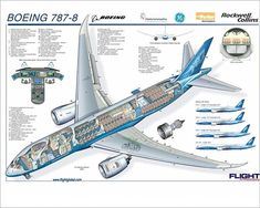 Take a look at the 'Boeing Micro Cutaway Poster, includes aircraft interior - Photo Prints - from FlightGlobal Boeing 787 Dreamliner, Boeing 787 8, Boeing Aircraft, Passenger Aircraft, Cutaway, Boeing Everett Factory, Aircraft Interiors, Wide Body, Military Aircraft