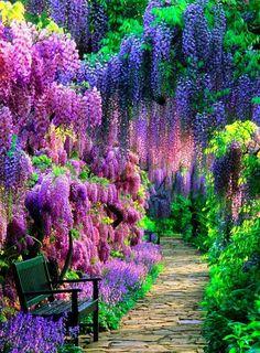 Garden Types, Beautiful Landscapes, Beautiful Gardens, Beautiful Places, Beautiful Pictures, Beautiful Scenery, Wonderful Places, Beautiful Tree Houses, Beautiful Days