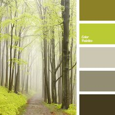 This colour palette with rich pastel shades of green and neutral gray will be very timely in the autumn, when it becomes quite cold and damp. Room Color Schemes, Room Colors, Paint Colors, Pastel Shades, Pastel Colors, Green Colors, Pastel Palette, Green Palette, Colour Pallete