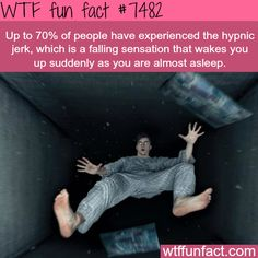 WTF Facts : funny, interesting & weird facts — The hypnic jerk - FACTS Learn to control it and fly. First you have to become aware, that you are in a dream. Take control, and do whatever you want. Wow Facts, True Facts, Funny Facts, Funny Memes, Random Facts, Videos Funny, Random Stuff, Scary Stuff, Wtf Funny