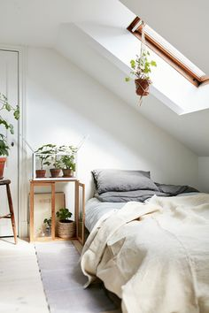 Plant-iful - Your Bedside Has Never Looked This Good - Photos
