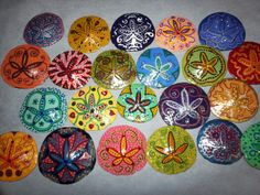 watercolor sand dollar | Sand Dollar magnets | Pinta todo, Painting all