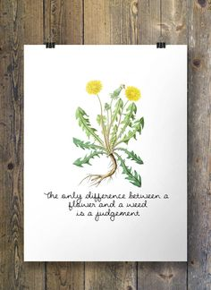 The only difference between a flower and a weed is a judgement - Printable wall art  INSTANT download digital PDF poster