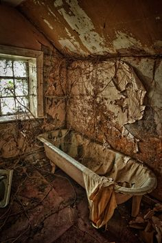 I find abandoned and decaying houses very aesthetically pleasing. There is so much beauty in watching things break down.