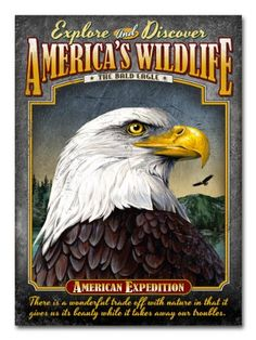 American Expedition Embossed Tin Cabin Signs (Bald Eagle) American Expedition http://www.amazon.com/dp/B00HQMEBVE/ref=cm_sw_r_pi_dp_bNS6ub0C12G04