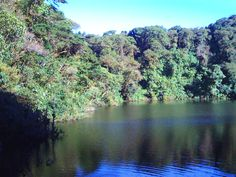 La laguna del cráter del Volcán Barba, Heredia, Costa Rica.