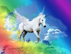 Unicorn Rainbow by Reavis Photography
