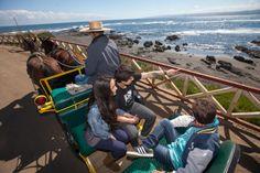 Las Cabritas, un transporte típico para recorrer las calles de Pichilemu.