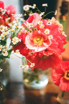 poppies & chamomile   photo by Jen Huang. | bright wedding photography and flowers