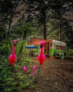 Vintage caravan and flamingoes .....All sizes   Free Range   Flickr - Photo Sharing! by janet