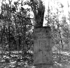 BLOG: The Euchee (or Yuchi) Indians of the Florida Panhandle are a sparsely documented group. For many years, however, a grave marker dedicated to one of their chiefs stood at the confluence of the Choctawhatchee River and Bruce Creek. Find out more about the Euchee Indians and their role in the establishment of Walton County on today's blog! | Florida Memory