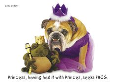Silly Dog Humor…. http://poshonabudget.com/2014/01/silly-dog-humor.html via @poshonabudget