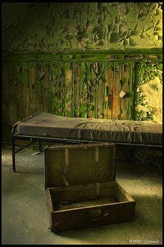 Green Hospital by Martino ~ NL, via Flickr