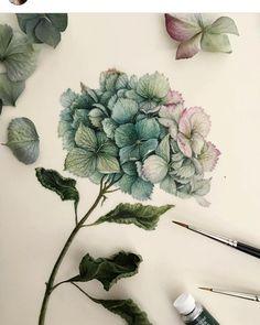 "740 Likes, 5 Comments - Watercolor_flower (@watercolor__flower) on Instagram: ""Artist @tasamajamarina )) .…"""