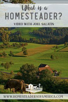 What is a Homesteader? Video with Joel Salatin of Polyface Farm  #homesteader #homesteading #farming #farmtotable #smallfarm #familyfarm #joelsalatin