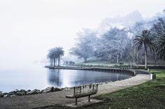 Foggy snap at lake Rotoroa,Hamilton NZ. Surrealism, Hamilton, New Zealand, Country Roads, River, City, Instagram Posts, Outdoor, Google