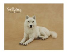 Miniature 1:12 scale White She Wolf by Pajutee on deviantART