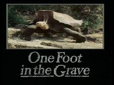 title card one foot in the grave Theme Tunes, Theme Song, Bbc Tv, British Comedy, Title Card, The Good Old Days, Laughter, Nostalgia, Tv Shows