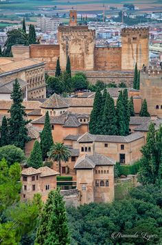 Alhambra Spain, Spain Images, Beautiful Places To Travel, Spain And Portugal, Spain Travel, Travel Around The World, Vacation Spots, Malaga, Travel Photography