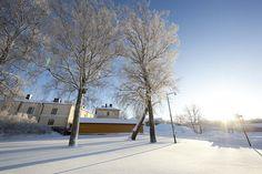 Winter in Suomenlinna, Helsinki   Flickr - Fotosharing!
