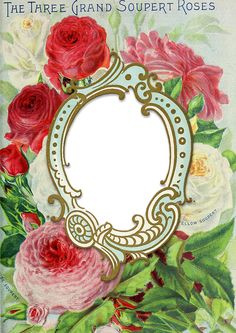 Wings of Whimsy: 1899 Seed Catalog Frame
