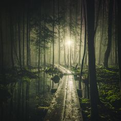 Pathway | Scenic Photographs Taken By Mikko Lagerstedt