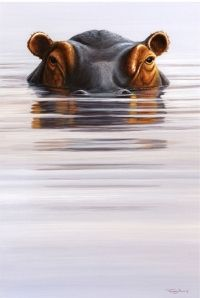 All images are the original artwork of nature artist and wildlife artist Dr. Jeremy Paul and are protected by international copyright laws. Wildlife Paintings, Wildlife Art, Animal Paintings, Animal Drawings, Hippo Tattoo, Hippo Drawing, Nature Artists, Mundo Animal, Animal Totems