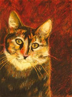 Kato - by Jeanne Fischer the rescued cat #catportrait #feline #cat
