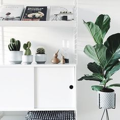 Stylish monochrome living room inspiration with greenery and wood accents Scandinavian Interior, Home Interior, Interior Styling, Interior And Exterior, Interior Decorating, Scandinavian Shelves, Diy Inspiration, Living Room Inspiration, Interior Inspiration