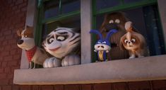 The Secret Life of Pets 2 HD Wallpapers Lake Bell, Kevin Hart, Jenny Slate, Hd Movies, Movies Online, The Lion King, Sing Street, Illumination Entertainment, Pets Movie