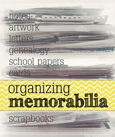 organizing memorabilia by theme: geneology, school, holidays, birthdays, life by person (baby, toddler, childhood, college), Family Life.