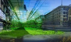 Urban agriculture   Sustainable Cities