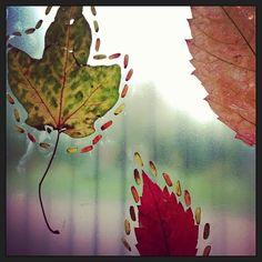 {Simple Fall Nature Art}
